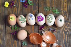 Coloring Easter eggs with onion. Decorating and coloring Easter eggs with onion Royalty Free Stock Image