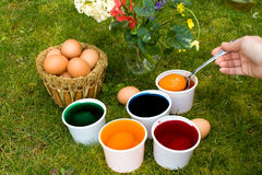 Coloring Eggs. Holidays - Easter Tradition - Coloring Eggs Royalty Free Stock Photo