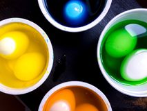 Coloring eggs Stock Images