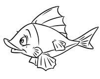 Coloring fish cartoon illustration Royalty Free Stock Image