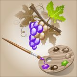 Coloring the grape Royalty Free Stock Photos