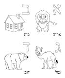 Coloring Hebrew Alphabet [1]. Hebrew alphabet for kids: letters Aleph, Beth, Gimel and Daleth with four cute cartoon drawings representing a lion, a house, a stock illustration