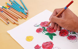 Coloring In His Sketch of Roses Stock Photography