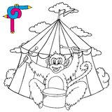 Coloring image circus with monkey Stock Image