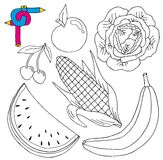 Coloring image fresh collection royalty free illustration