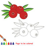 Coloring kid game. Educational page to be colored. Stock Photo
