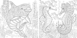 Zentangle Dolphin and Seahorse set. Coloring Page. Adult Coloring Book. Underwater Ocean world. Dolphin among marine seaweed. Sea horse, shoal of tropical fishes Stock Image