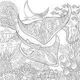 Zentangle underwater background Royalty Free Stock Photography