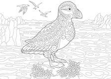 Zentangle puffin sea bird Royalty Free Stock Photos