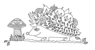 Coloring page for adults. Funny hedgehog Royalty Free Stock Photos