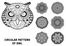 Coloring page for adults. The head of a owl Royalty Free Stock Photos