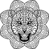 Coloring page for adults. Stern Jaguar on a background of a circular patterns. Stern Jaguar on a background of a circular mandala pattern. Coloring antistress Stock Photo