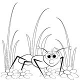 Coloring page - Ant and daisy Stock Photos