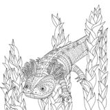 Coloring page with axolotl in patterned style. Coloring page with cute axolotl in patterned style. Black white hand drawn doodle with amphibian for art therapy vector illustration