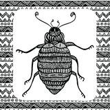 Coloring page of  Balck Bug Royalty Free Stock Images
