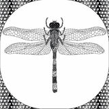 Coloring page of Balck Dragonfly, Zentangle Illustartion Royalty Free Stock Photo