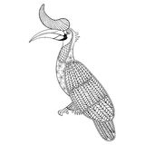 Coloring page with Bird Rhinoceros, Royalty Free Stock Image
