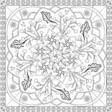 Coloring Page Book for Adults Square Format Floral Mandala Design Vector Illustration Stock Image