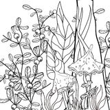 Coloring page book with decorative floral ornamental elements Stock Images