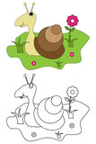 Coloring page book for kids - snail