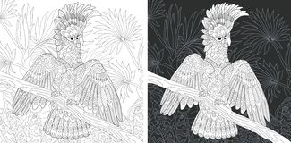 Coloring page with cockatoo parrot. Coloring Page. Coloring Book. Colouring picture with Cockatoo Parrot drawn in zentangle style. Antistress freehand sketch vector illustration