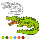 Coloring page. Color me: alligator. Little cute alligator. Stock Images