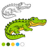 Coloring page. Color me: alligator. Little cute alligator. Stock Photography