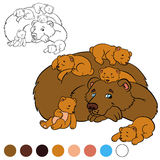 Coloring page. Color me: bear. Daddy bear with his baby bears. Stock Photos