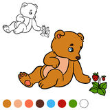 Coloring page. Color me: bear. Little cute baby bear. Stock Image