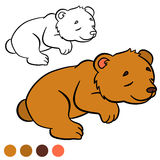 Coloring page. Color me: bear. Little cute baby bear. Coloring page. Color me: bear. Little cute baby bear sleeps Stock Photography