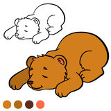 Coloring page. Color me: bear. Little cute baby bear. Coloring page. Color me: bear. Little cute baby bear sleeps Royalty Free Stock Photo