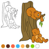 Coloring page. Color me: bear. Two little cute bears. Royalty Free Stock Image