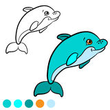 Coloring page. Color me: dolphin. Little cute baby dolphin swims Royalty Free Stock Images