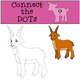 Coloring page. Color me: goat. Little cute baby goat. Royalty Free Stock Images