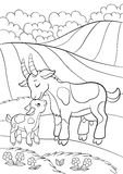 Coloring page. Color me: goat. Little cute baby goat. Stock Images