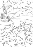 Coloring page. Color me: goat. Little cute baby goat. Stock Image