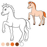 Coloring page. Color me: horse. Little cute foal. Royalty Free Stock Photography