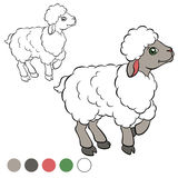 Coloring page. Color me: sheep. Royalty Free Stock Photo