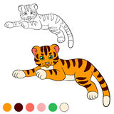 Coloring page. Color me: tiger. Little cute baby tiger Royalty Free Stock Images