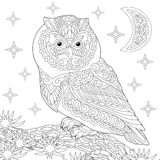 Zentangle owl coloring page. Coloring page. Coloring book. Anti stress colouring picture with owl. Freehand sketch drawing with doodle and zentangle elements royalty free illustration