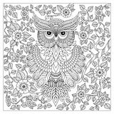 Coloring page with cute owl and floral frame Royalty Free Stock Image