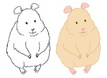 Coloring page of cute standing hamster on white background. Colouring book for kids and children. Cartoon vector illustration. Cartoon animal sketch drawn by stock illustration