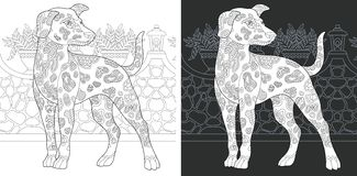 Coloring page with dalmatian dog. Coloring Page. Coloring Book. Colouring picture with Dalmatian Dog drawn in zentangle style. Antistress freehand sketch drawing royalty free illustration