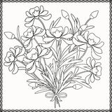 Coloring page decorative decorative elements flowers  illustration Stock Images