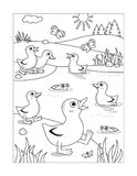 Coloring page with ducklings at the pond Royalty Free Stock Photo