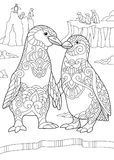 Zentangle stylized penguin couple Stock Photos
