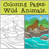 Coloring page with example. Mother fur seal with her baby. Coloring page with example. Mother fur seal with her little cute baby lay on the rocks and smile Royalty Free Stock Photography