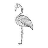 Coloring page with Flamingo bird, zentangle illustartion tribal Stock Photo