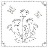 Coloring page from the flowers and butterflies Stock Photos