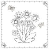 Coloring page from the flowers and butterflies. Royalty Free Stock Image